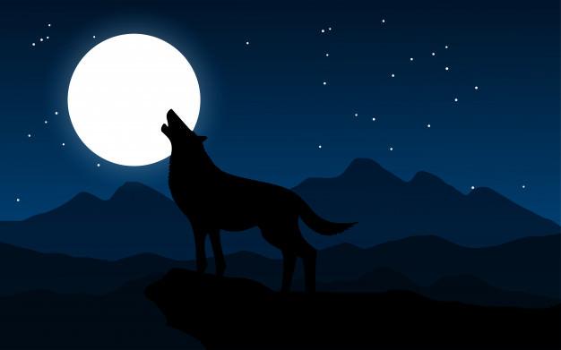 почему волки воют