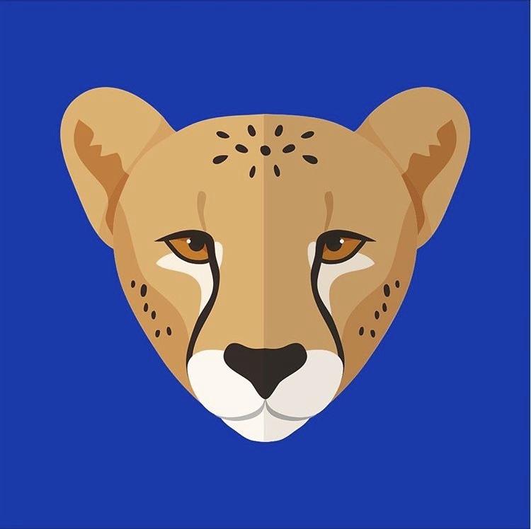Интересные факты про животных Африки